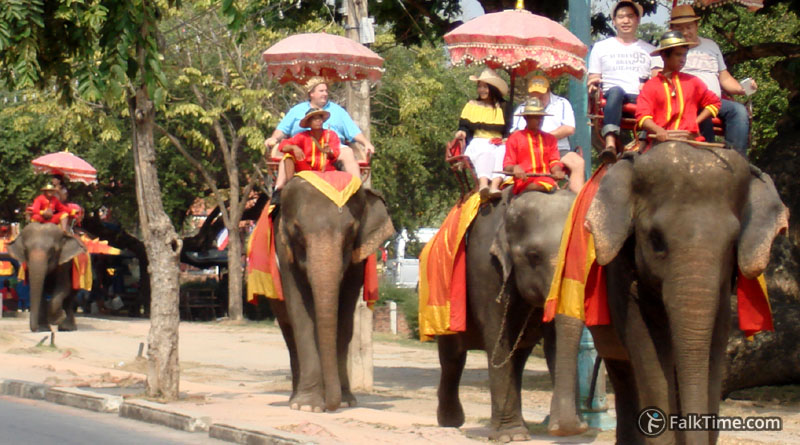 Elephants as a mean of transport