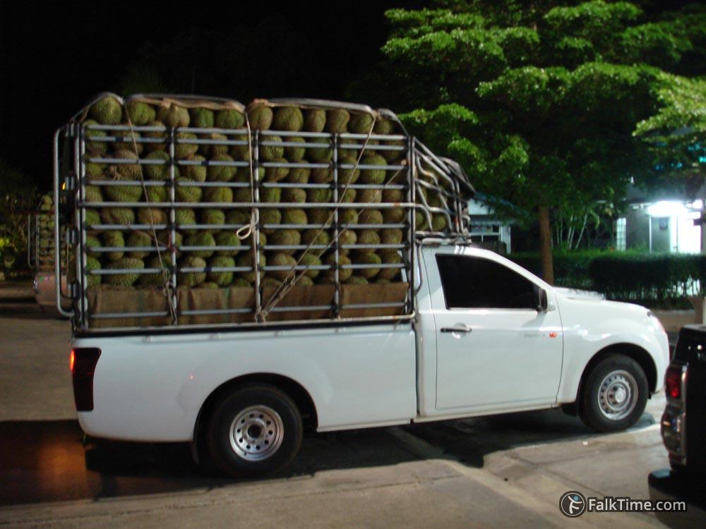 Pickup full of durians