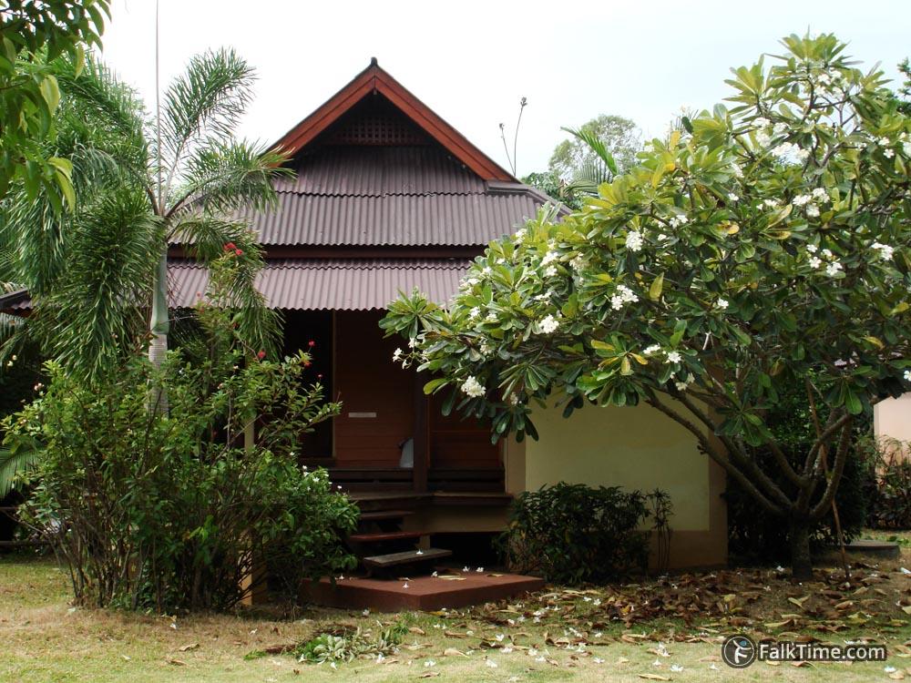 Picturesque Frangipani next to bungalow