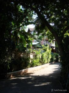 Quiet shady street